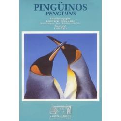 PINGUINOS / PENGUINS